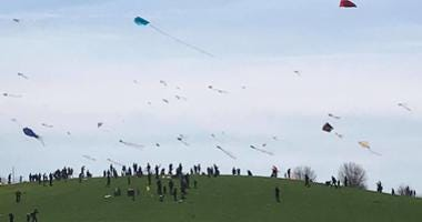 Kite flying festival at Montrose Harbor
