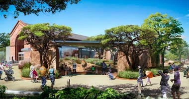 Kovler Lion House rendering - Lincoln Park Zoo