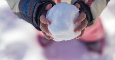 Snow Ball Generic