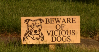 Vicious dog sign