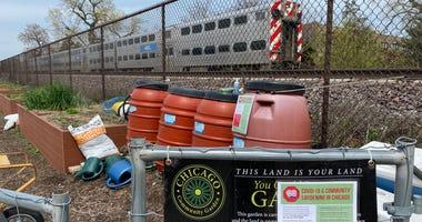 Ravenswood Community Garden