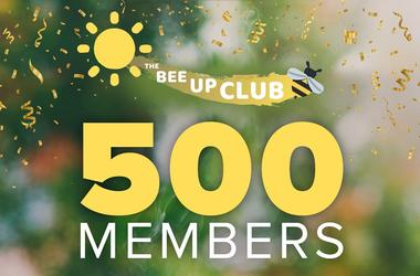 500 Bee Up Club