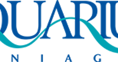 Aquarium of Niagara Makeover Continues
