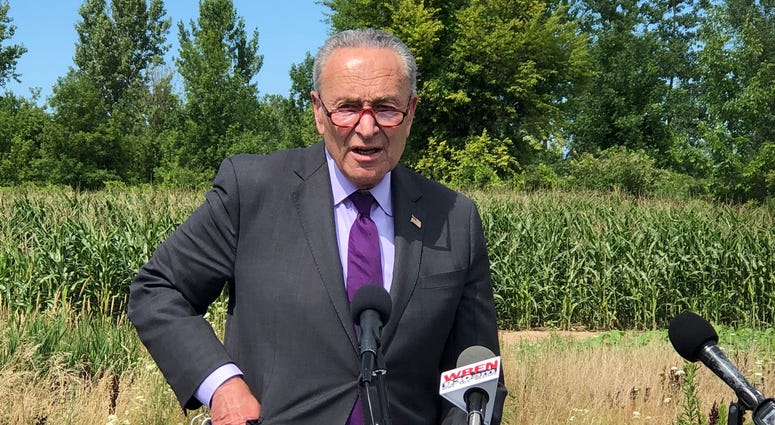Senator Chuck Schumer in Basom, New York. July 31, 2020 (WBEN Photo/Mike Baggerman)