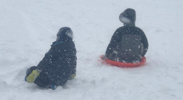 Chestnut Ridge Park sled hill