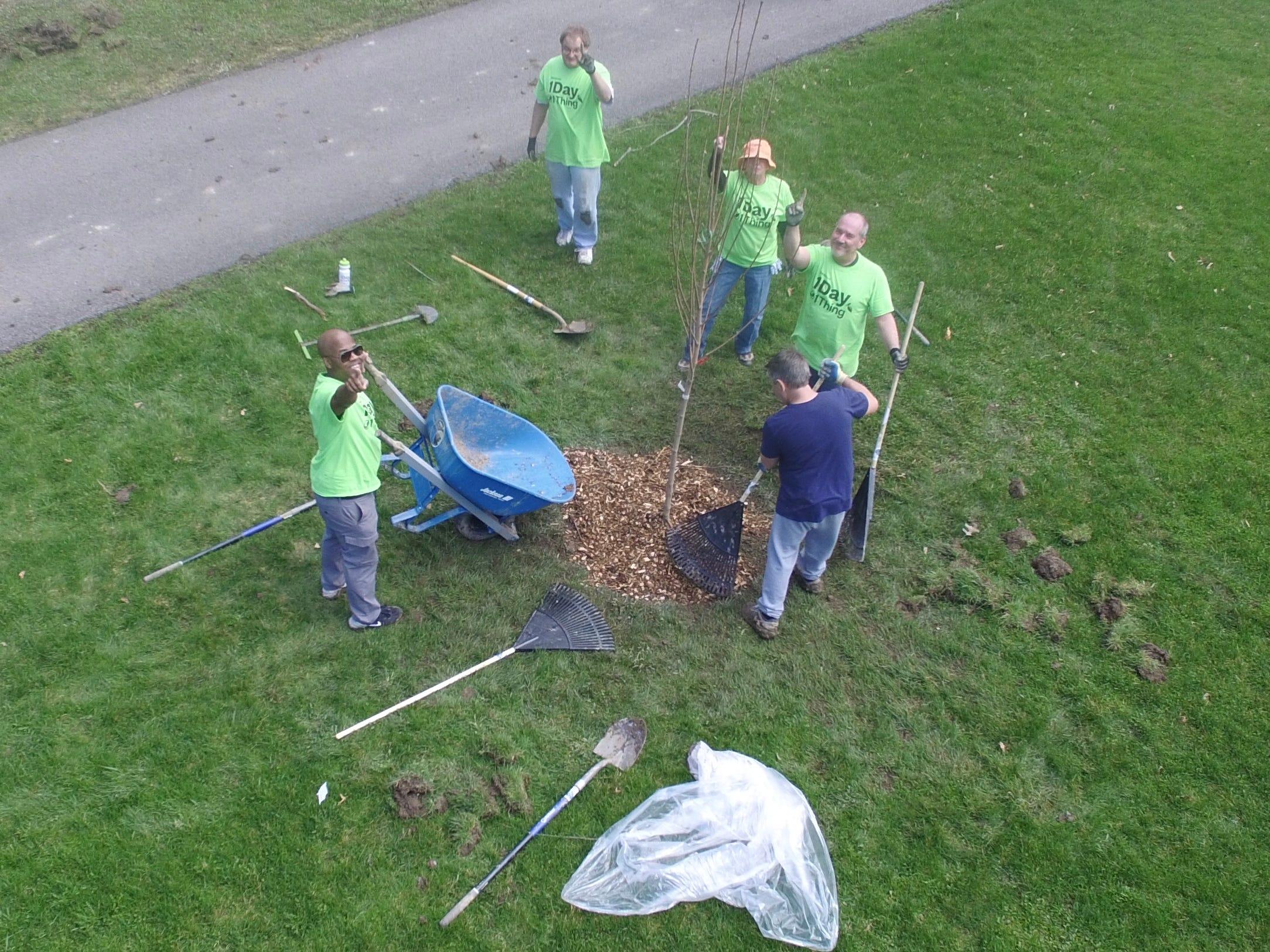 Earth Day effort in Ellicott Creek Park