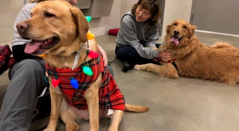 Radiothon Day for the SPCA Serving Erie County | WBEN 930am