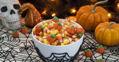 Halloween candy.