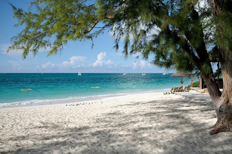 Frye Island For Sale