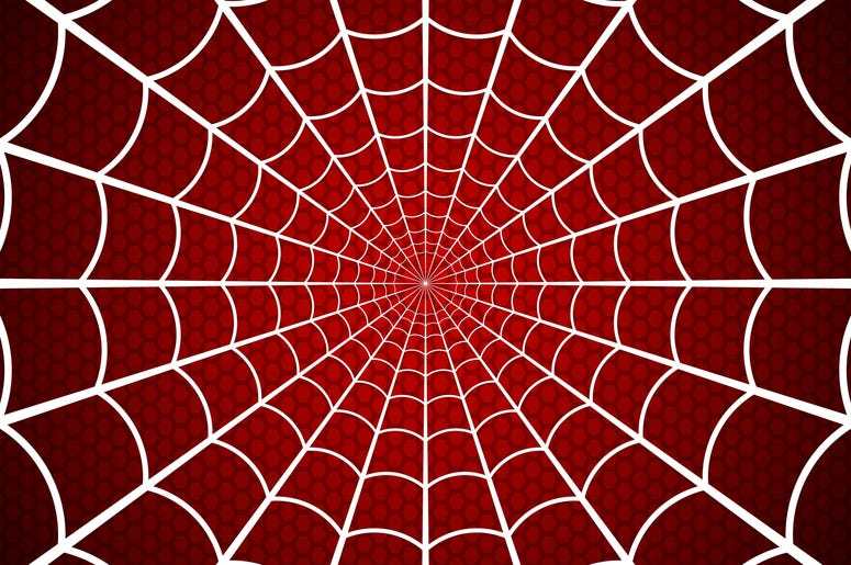 Spider's Web on Red Background