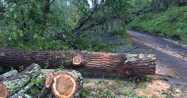 Danbury Storm Damage