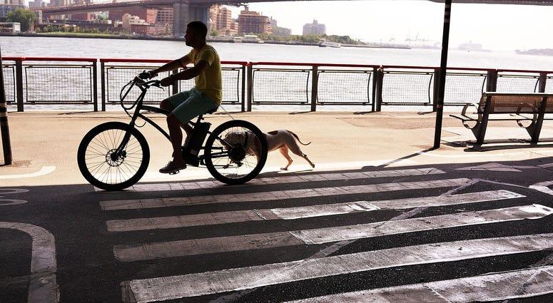 East River Park, Manhattan