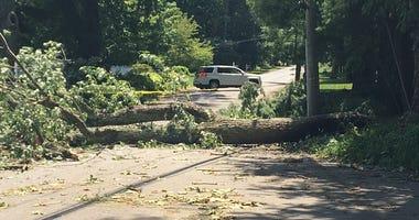 Isaias damage in Stamford