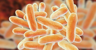 Legionnaires' Disease