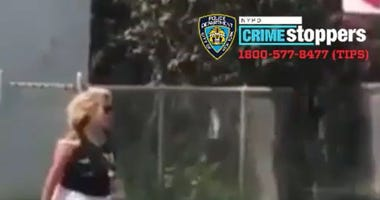 jogger attacked in queens