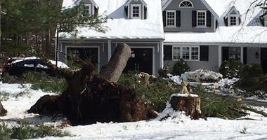 Nor'easter Damage in Westport