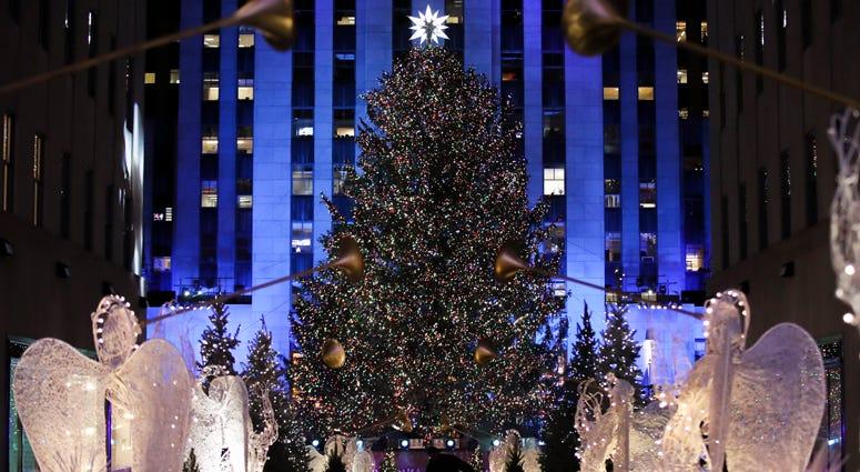 Christmas Tree Cut Down At Upstate NY