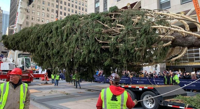 2019 Rockefeller Christmas tree