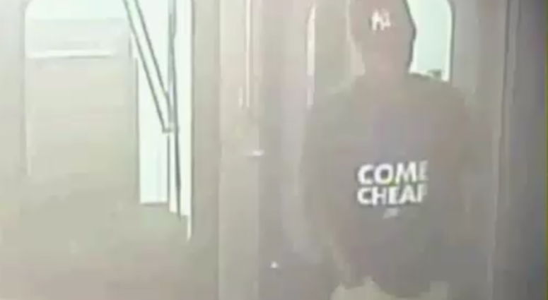 Subway brake-pulling suspect