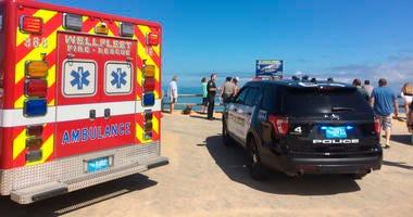 Shark Attack at Cape Cod