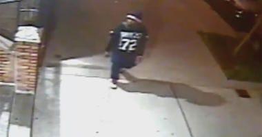 Bronx Attempted Rape Suspect