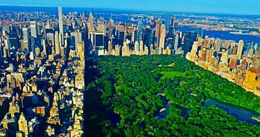 A Green Central Park