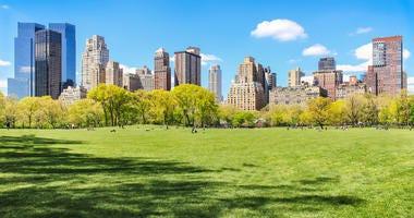 Sunny Central Park
