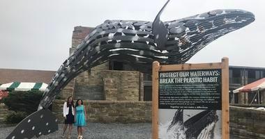 Jonesy the Whale