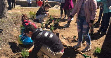 Students in Syosset built a peace garden dedicated to the victims of school shootings.