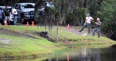 South Carolina Alligator Attack