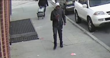 Car thief suspect