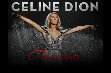 Celine Tour DL