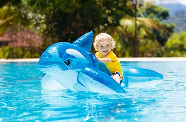 Toddler on shark toy in pool
