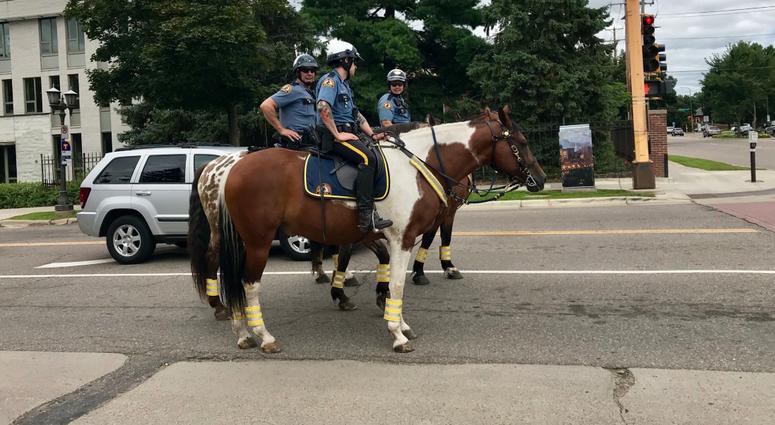 Saint Paul police horses