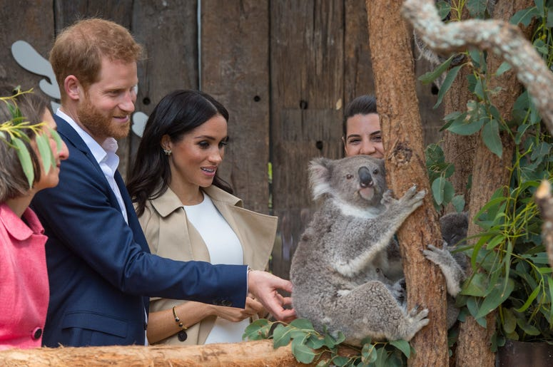during a visit to Taronga Zoo in Sydney on the first day of the Royal couple's visit to Australia.