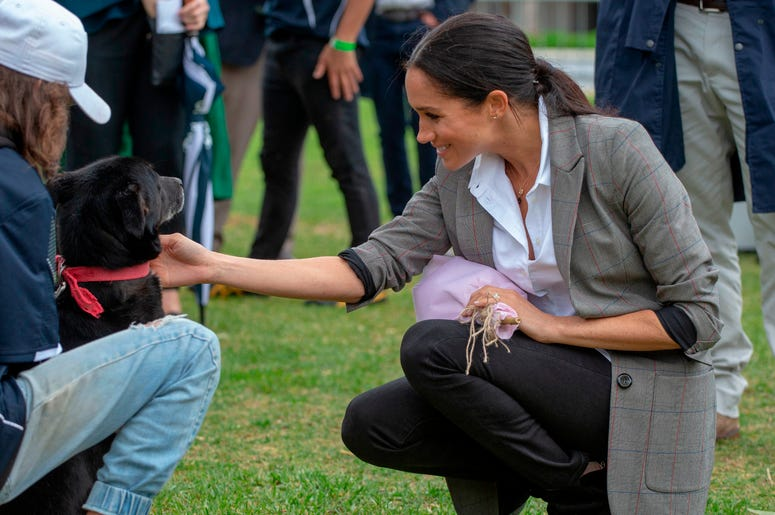 The Duchess of Sussex strokes a dog as she attends a community picnic in Victoria Park in Dubbo, New South Wales, on the second day of the royal couple's visit to Australia.