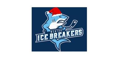 Mentor Icebreakers