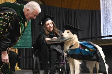 Loyal Service Dog Gets Diploma Alongside Graduating Companion In Wheelchair