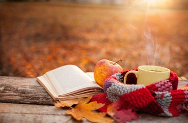 Fall relaxation