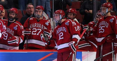 Harvard hockey