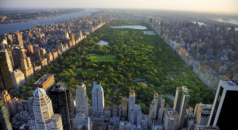 NYC's Central Park