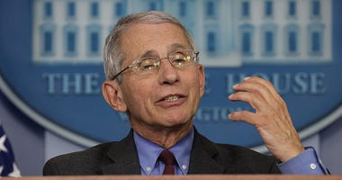 Dr. Anthony Fauci speaks at a White House press conference