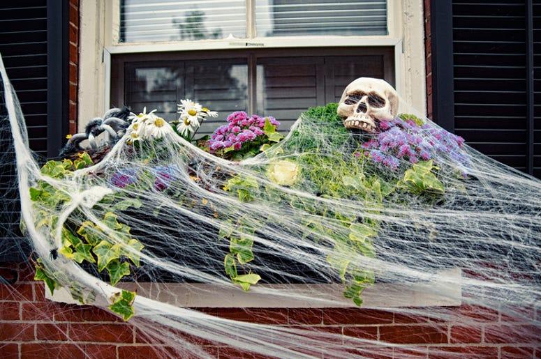 DOC SHOW AUDIO: Halloween Homes in NEPA