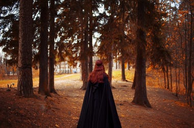 Young beautiful and mysterious woman in woods, in black cloak with hood, image of forest elf or witch, back