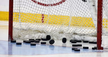 NHL empty net