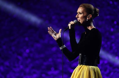 Celine Dion On Stage Singing