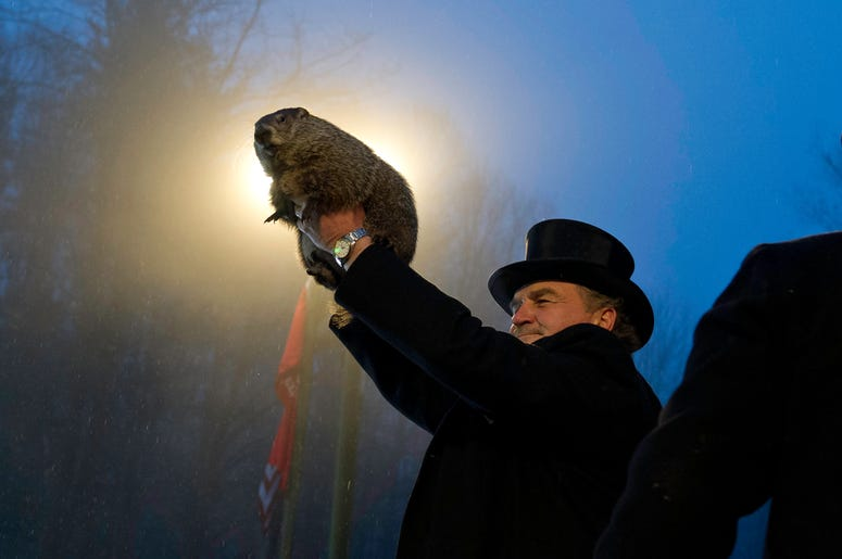 A tradition of Punxsutawney Phil predicting the end of winter could come to an end.