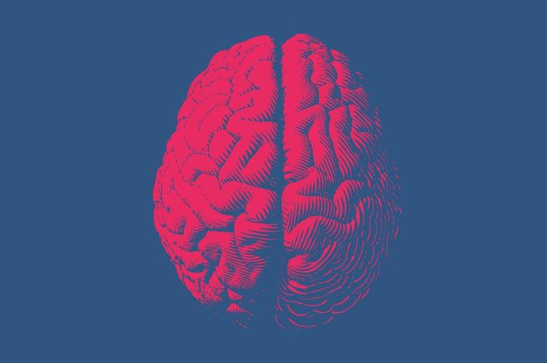 Monochrome drawing brain vintage style