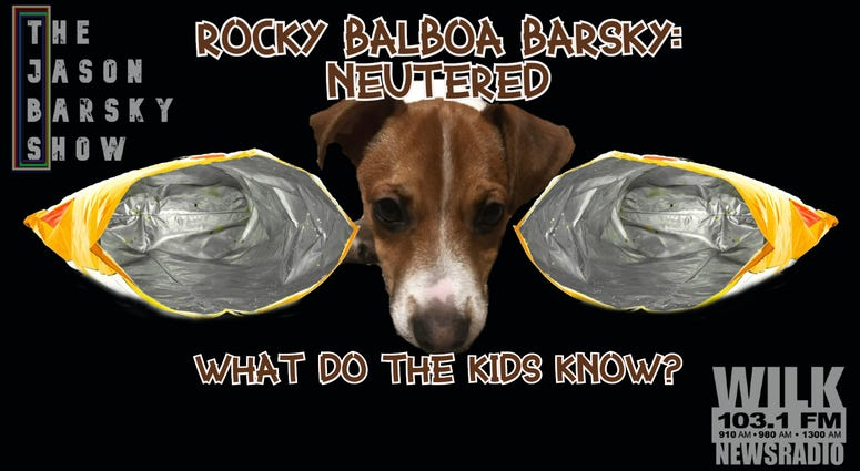 Rocky Balboa Barsky Got Fixed