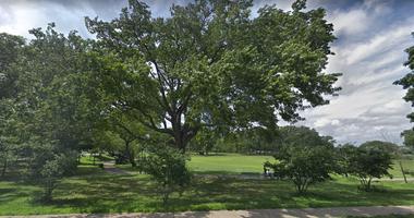 Bailey Pond Park